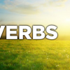 Proverbs – the Disciplined Life